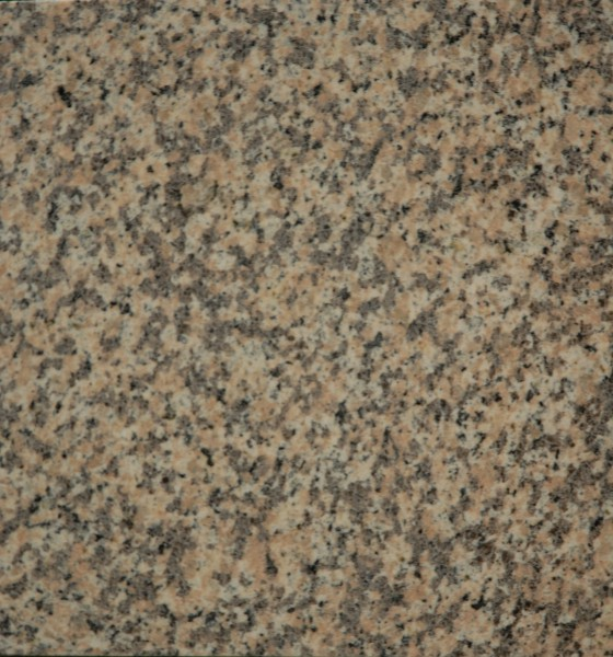 Sockel Wüstenblume 30,5x8x1 cm, poliert